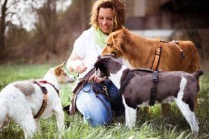 Dogwalkerin Hundetrainerin Dogwalker Hundetrainer Dogwalker Ausbildung Weiterbildung Hundegruppe Coaching