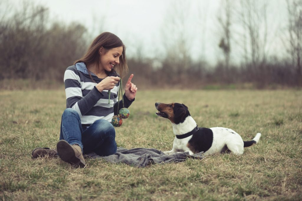 Podcast-Hund-Hunde-Hundeerziehung-Hundetraining-Dogwalker-Dogwalking-Hundesitter-Hundesitter werden-Problemverhalten-Frustration-mindern-Frustration mindern bei deinem Hund-weniger gefrustet-mehr Impulskontrolle-Nürnberg-Fürth-Hundeschule-Körpersprache