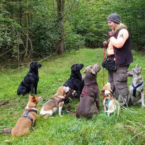 Anne Rosengrün gründete 2006 Sanny's Hundeservice aus Liebe zu Hunden.