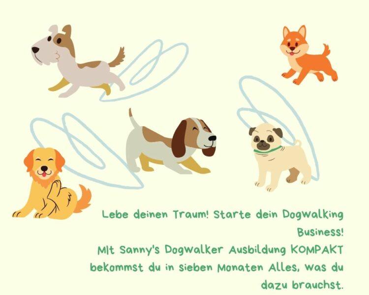 Online basierte Ausbildung für Dogwalker*innen und Hundebetreuer*innen